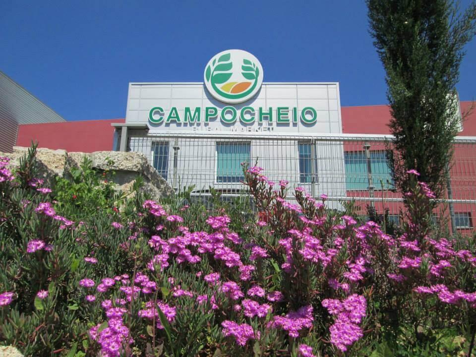 Sede CAMPOCHEIO (2)